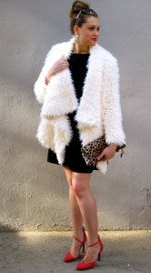fancycoat4